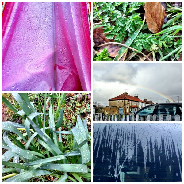 raindrophunt