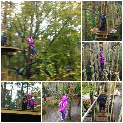 Go Ape Junior Tree Top Adventures