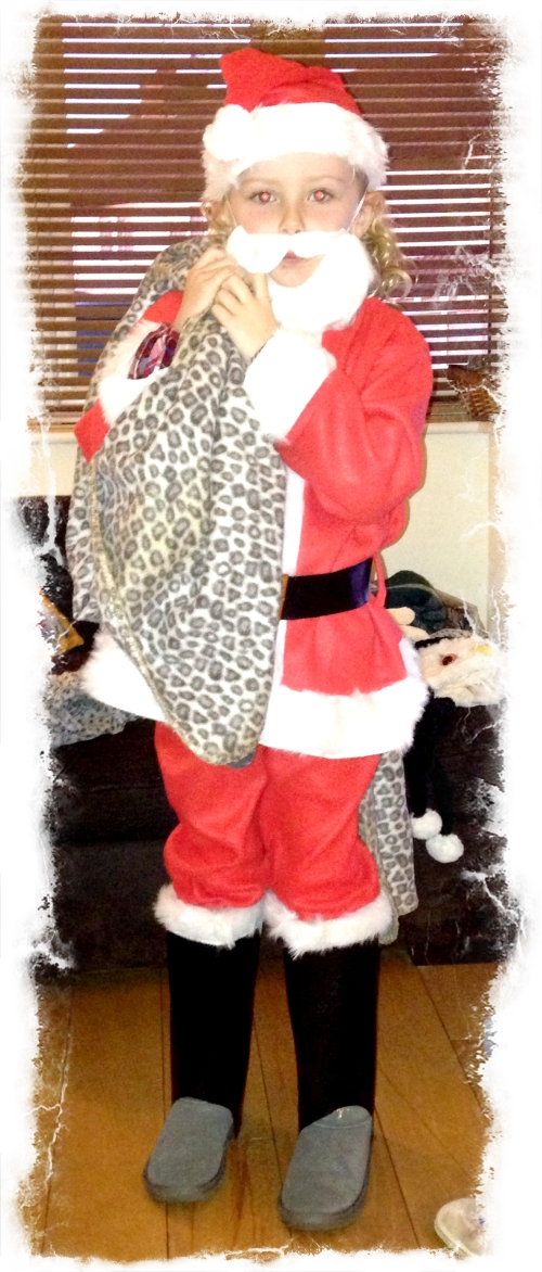 Father Christmas Fancy Dress Costume