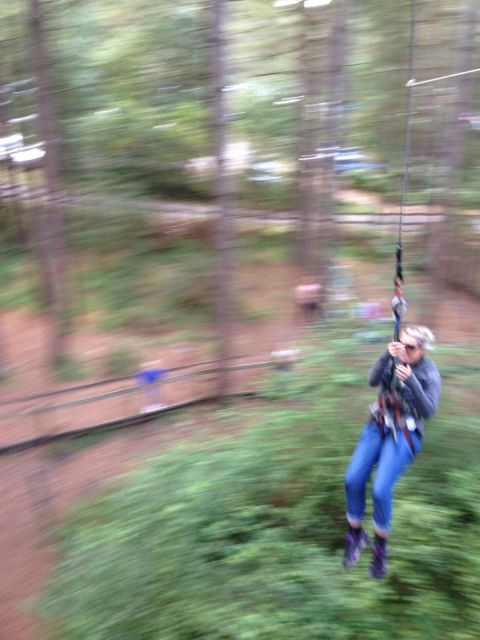 Go Ape Forest Adventure near Bournemouth